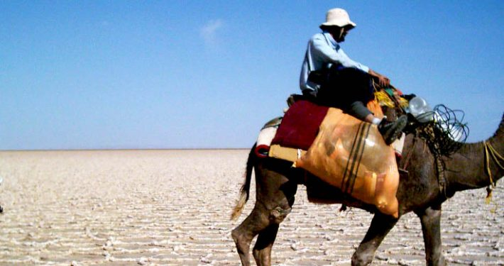 June 17 , the World Day to Combat Desertification and Drought